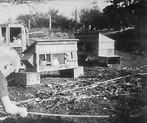 1939 Roald Hansen and our rabbit hutches
