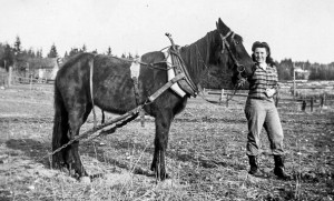 1943-03 Merna trained Firefly to pull farming equipment