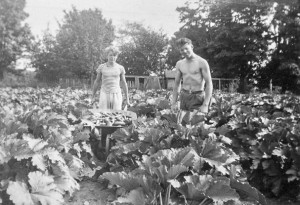 1945-07 Bob and Don Hansen in zucchini patch