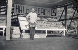 1948-09 Don Hansen working at the Yakima Boys Fruit Stand